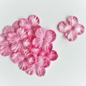 Гортензии мини ярко-розовые с белым