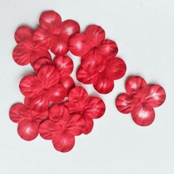 Гортензии мини красные с белым, 3 см, 10 шт.
