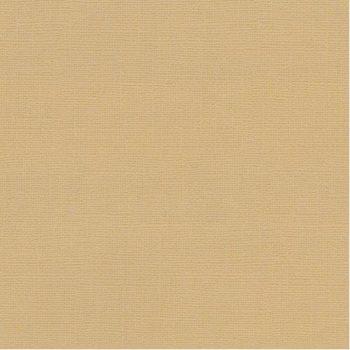 SCB172312130 Текстурированный кардсток Бежевый — ScrapBerrys, 30,5*30,5см