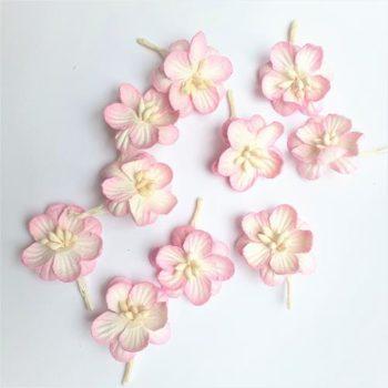 Цветки вишни набор Розовый с белым - ScrapBerrys, 10 шт.