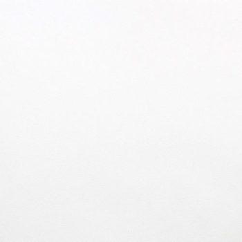 Кожа искусственная Белая 20*30см, толщ. 0,5 мм, 2 шт.
